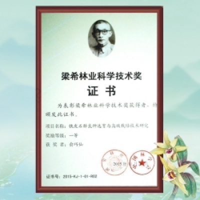 Liang Xi First Prize in Forestry Science and Technology